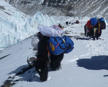 Everest advanced base camp trek